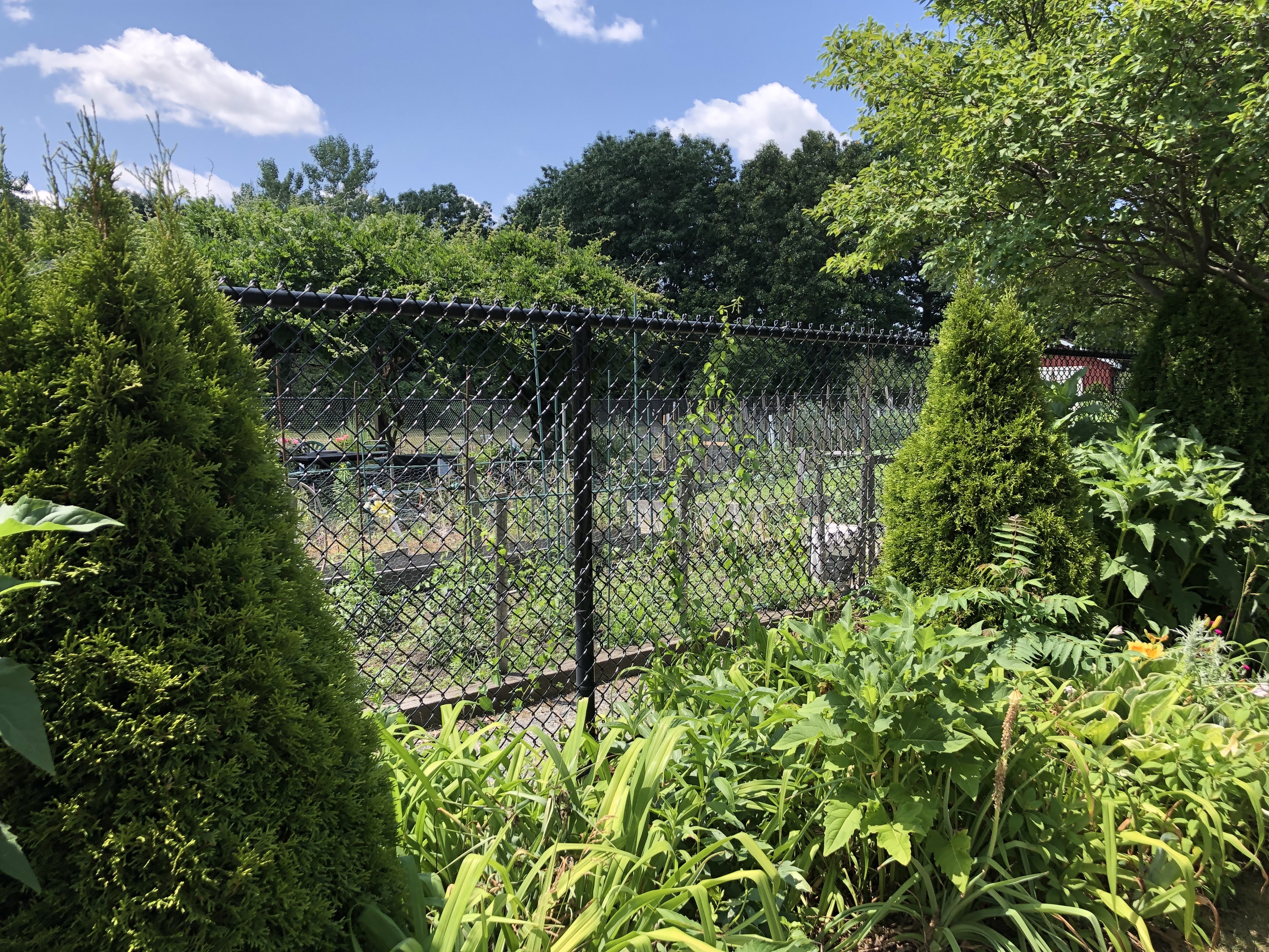Riverbend Park Community Gardens